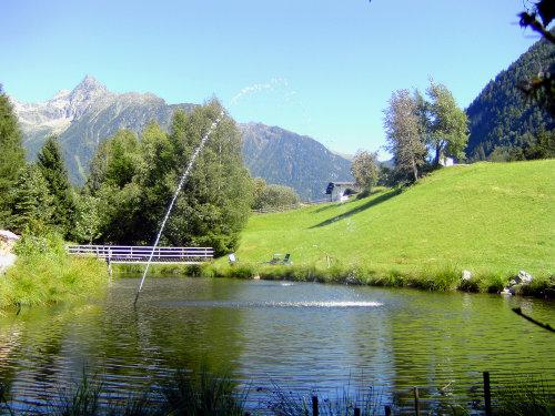 Unser idyllisch gelegener Badeteich