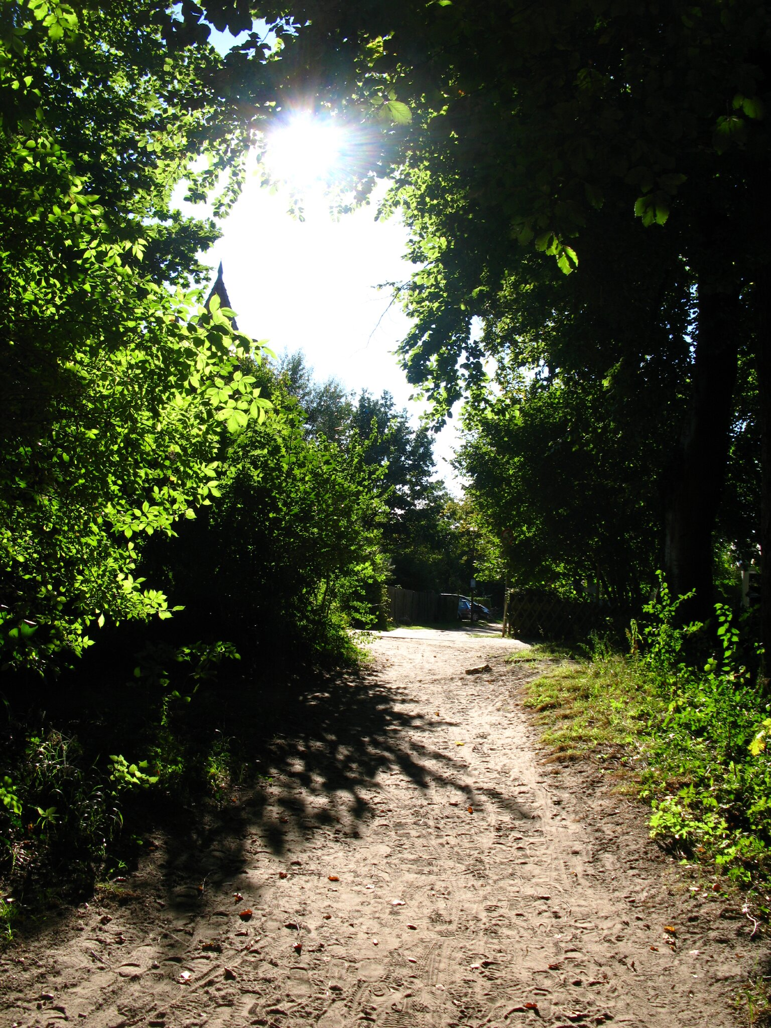 Koserow Seebruecke (800m)