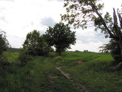 Zauberhafte Wanderwege in der Umgebung