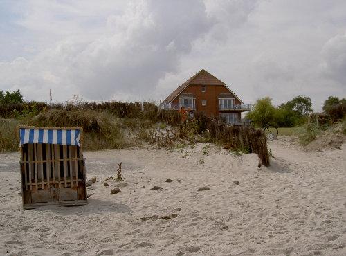 Strand und Dünen direkt vor dem Haus