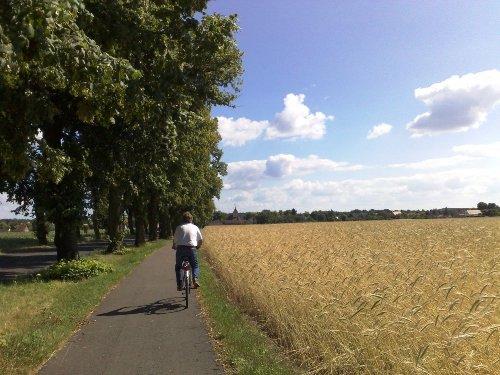 Gut ausgebaute Radwanderwege