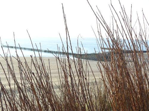 Meer und Strand Westkapelle
