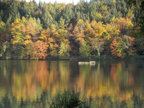 Herbstliche Idylle am Bergsee
