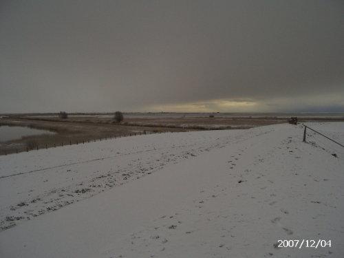 Deich im Schnee