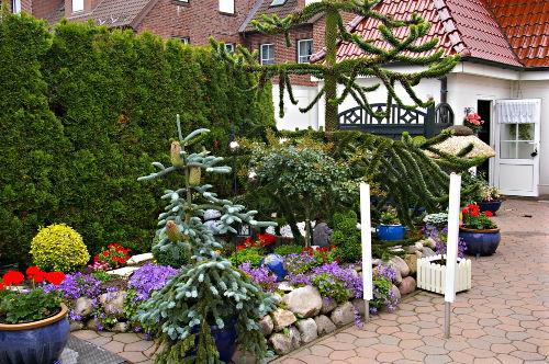 hinterer Gartenbereich