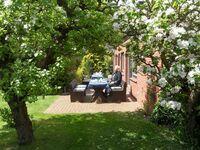 Der Künstlergarten - Ferienhaus 2 in Garding - kleines Detailbild