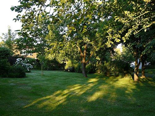 Der Garten in S�dlage