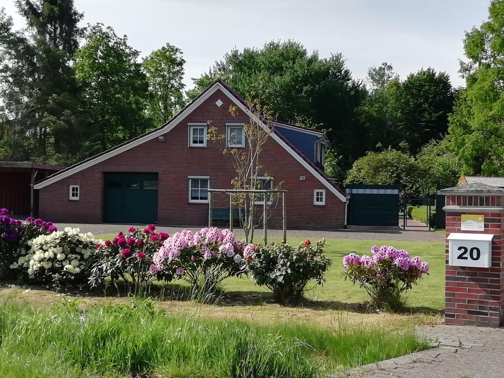 Unser großer Garten