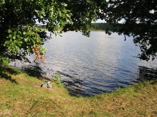 Uferplatz (ca. 300 m vom Haus entfernt)