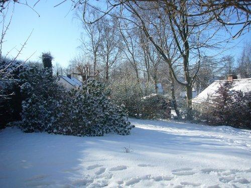 Der große Garten im Winter 2009
