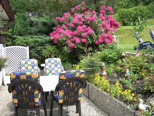 FW. Rose Terrasse