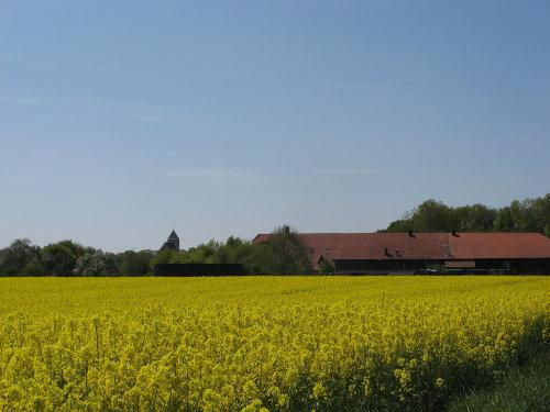 Blick auf Hof und Kirche im Mai