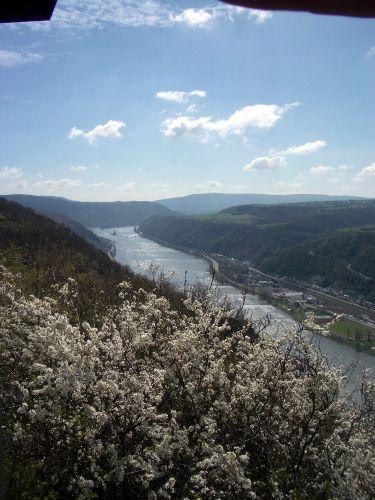 Rhein aufwärts Oberwesel