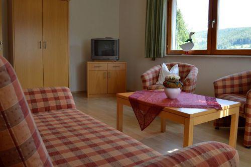 Wohnzimmer: Ansicht Schrank u. Fernseher