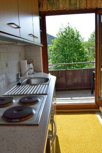 Küche: Blick zum Balkon