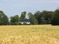 Refugium Pottloch - Ferienwohnung Gelting in Kronsgaard - kleines Detailbild