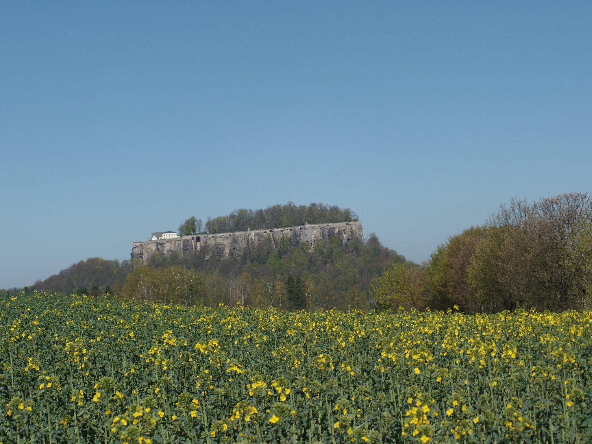 Festung K�nigstein