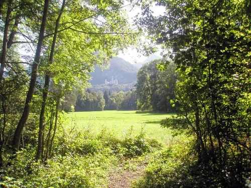 Schwansee-Park
