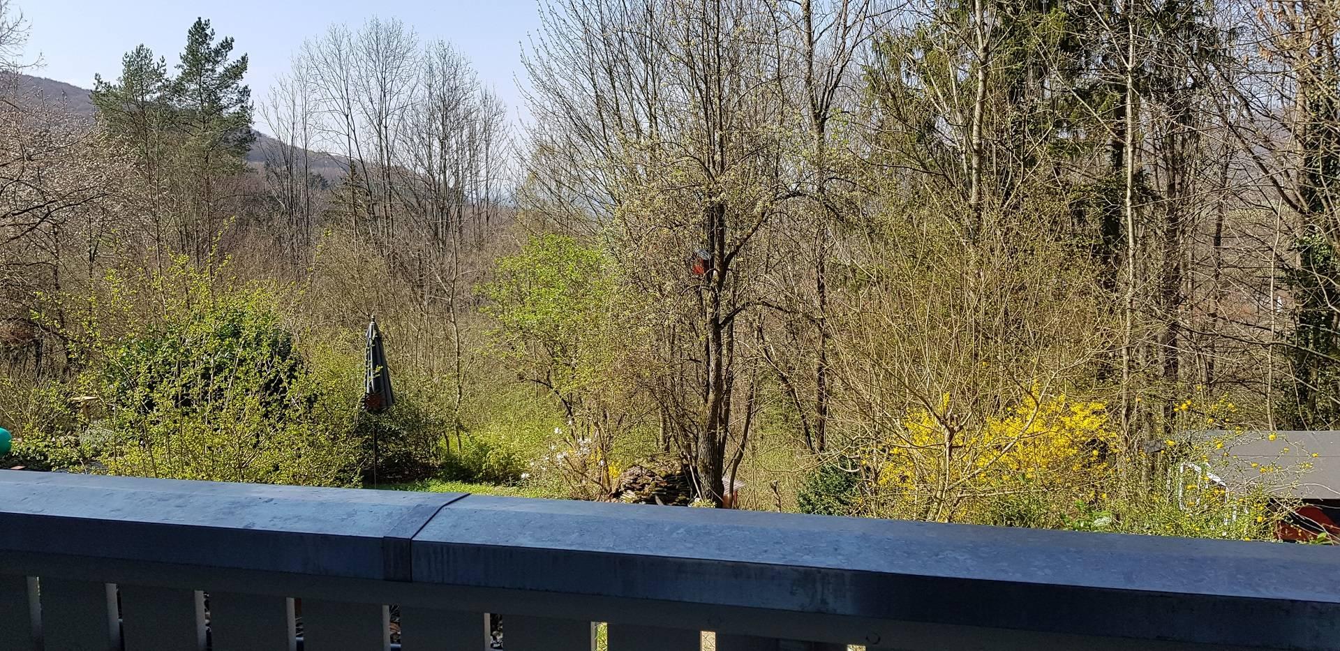 Der Balkon mit Aussicht ins Gr�ne