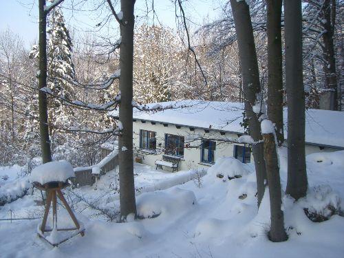 Ein Blick im Winter