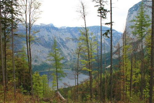 Altausser See (15 km entfernt)