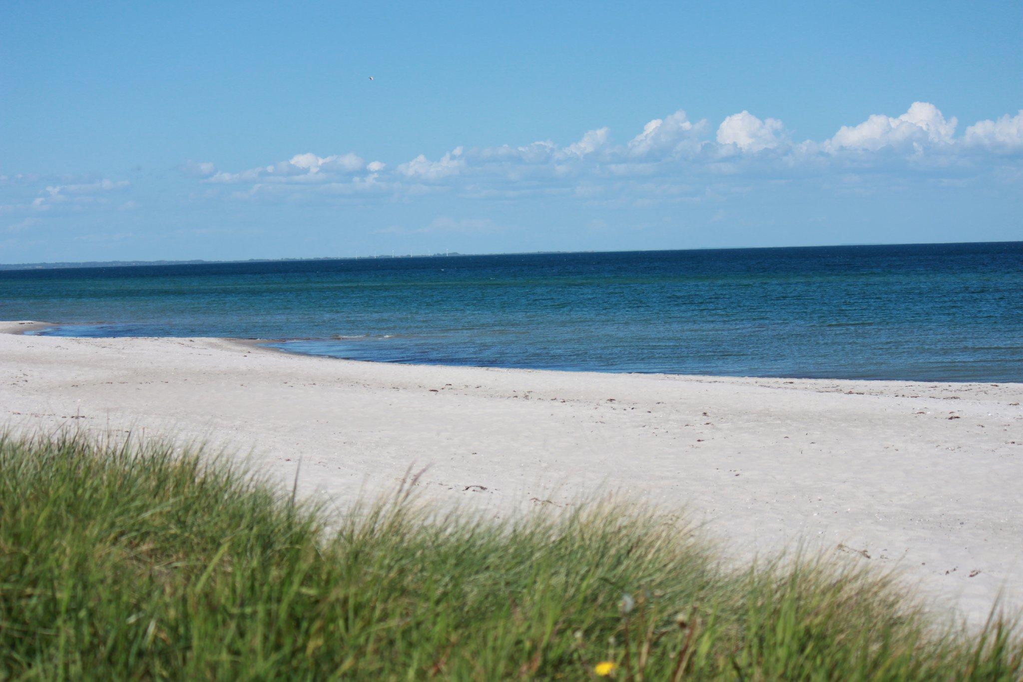 Blick auf das Refugium vom Strand
