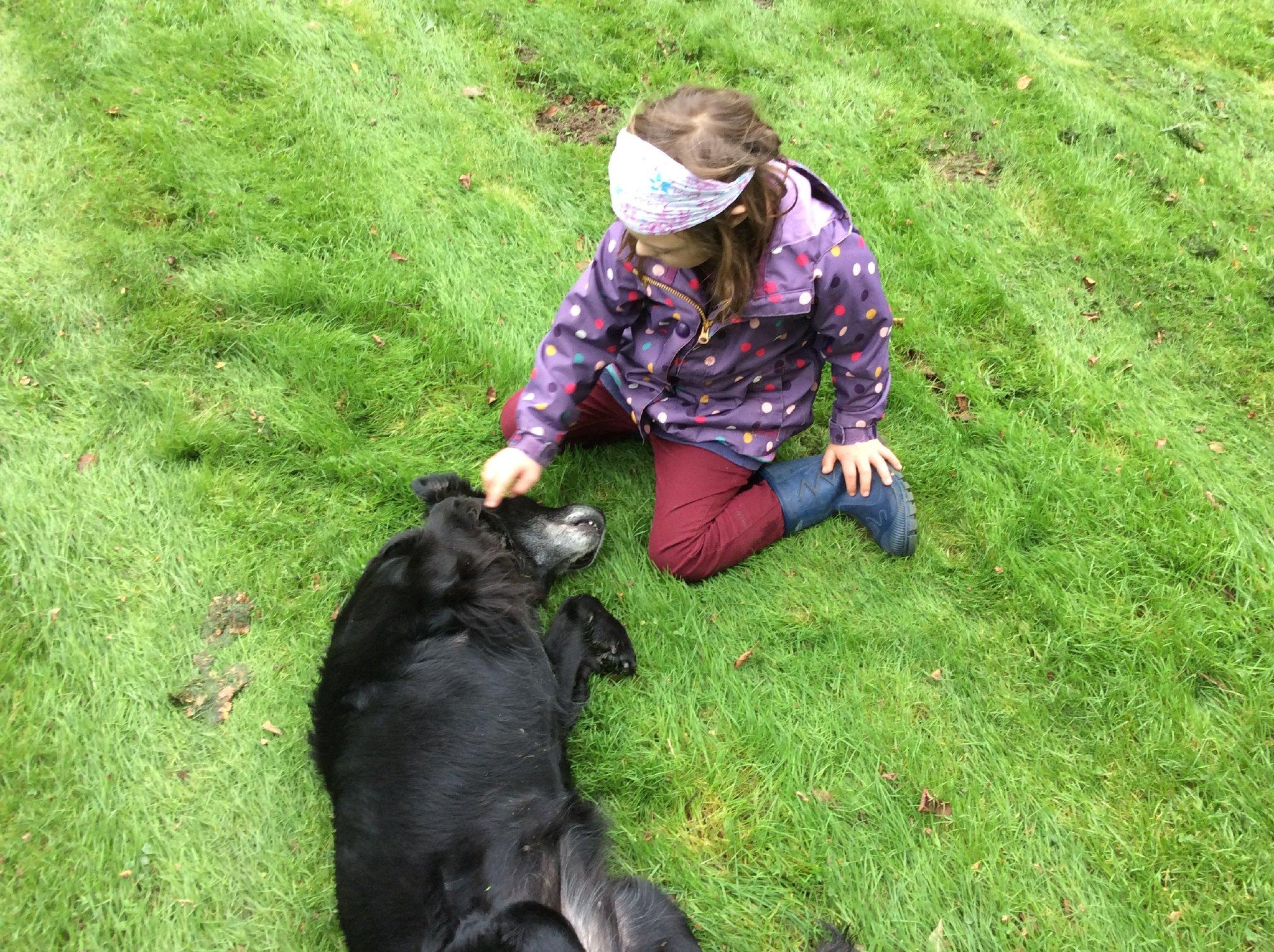 Esel und Pony auf unserer Weide
