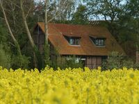 Ferienhaus Rosen in Gelting - kleines Detailbild