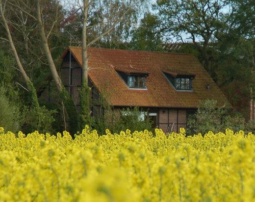 Ferienhaus Rosen / Weitblick über Felder
