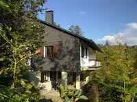 Ferienhaus Schanze 19 in Schmallenberg-Schanze - kleines Detailbild