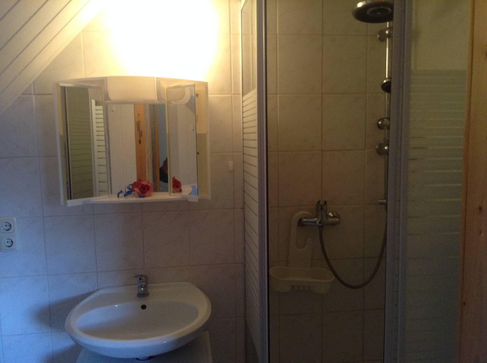 Sanitärbereich Adlerhorst mit Dusche