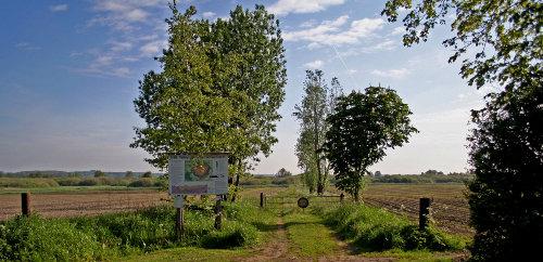 """Der Weg zum NSG """"Wildes Moor""""."""