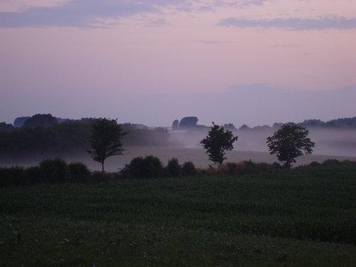Abendlicher Blick über die Felder