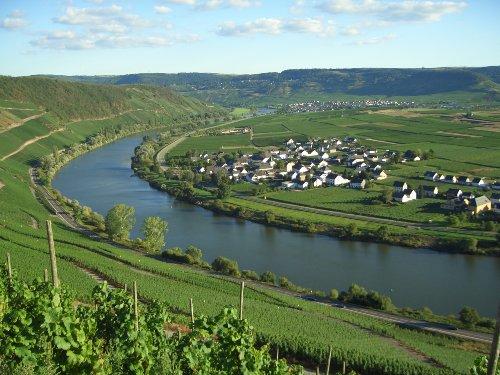 Blick auf Köwerich, Mosel und Weinberge