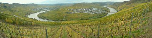 Moselschleife Zumet (im Herbst)