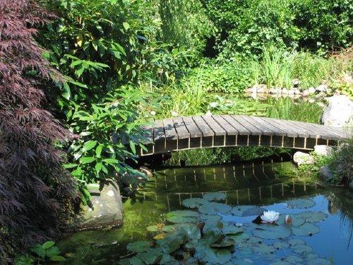 Einer der Teiche in der Gartenanlage