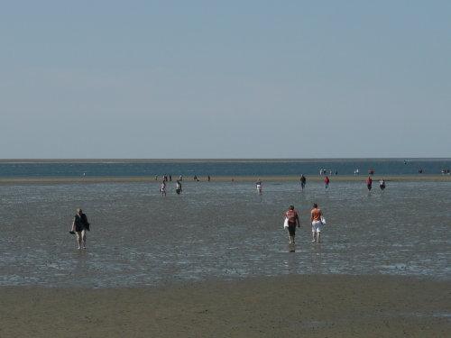Wattenlaufen bei Ebbe