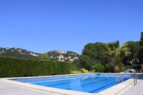 großer Pool 5mx10m