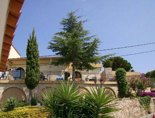 Sicht auf Terrasse Wohnung 4