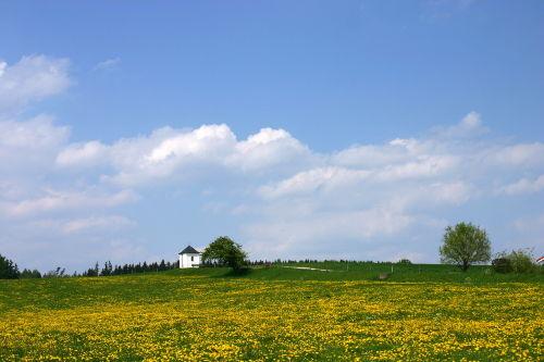 Frühling in Tettenhausen