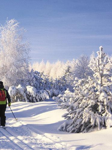 WINTER: Wandern und Langlauf