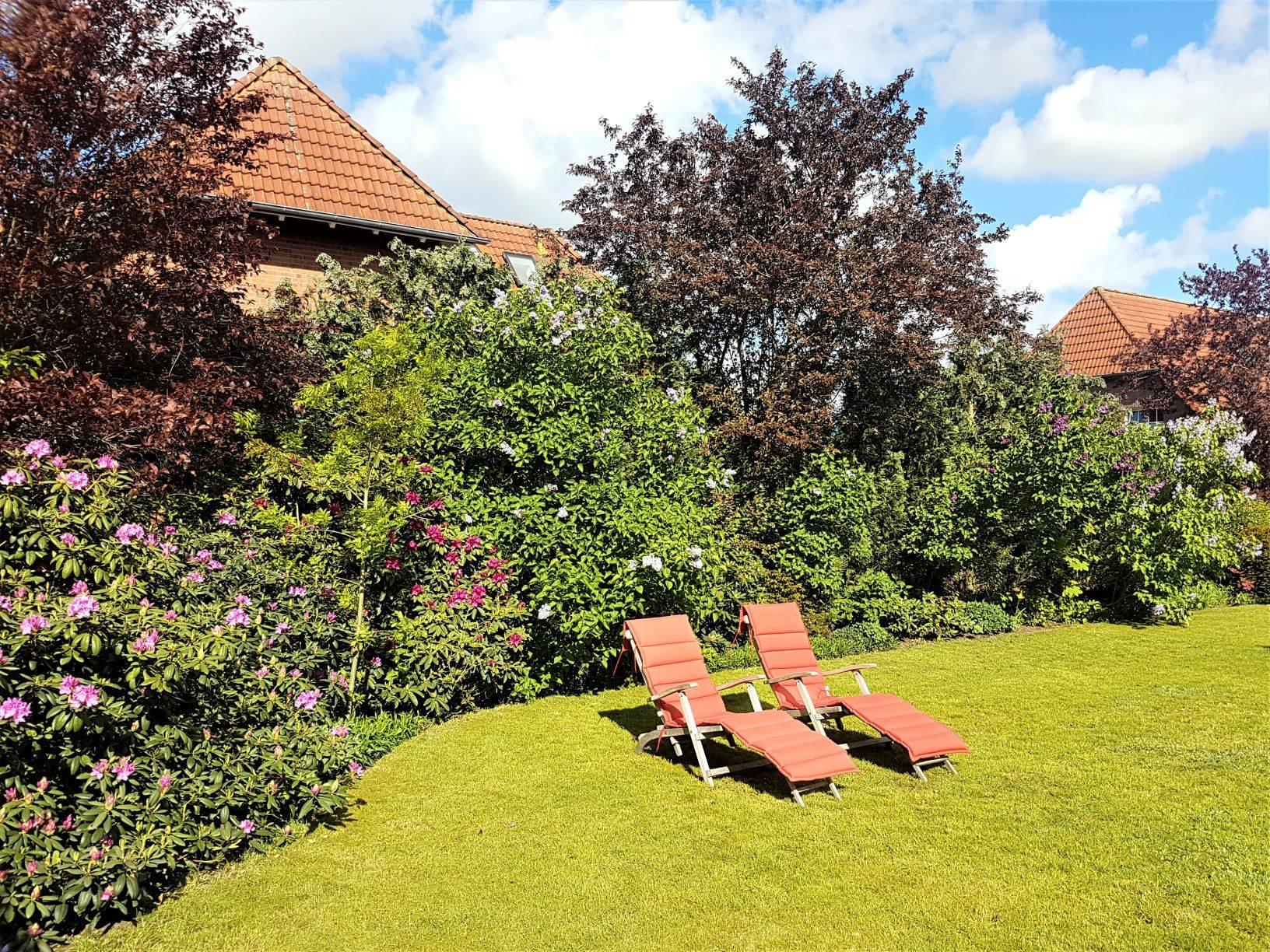 der große Garten mit Terrasse