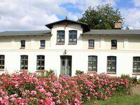 Hof Kreuzkamp - Bauernhaus Wohnung 4 in Papendorf - kleines Detailbild