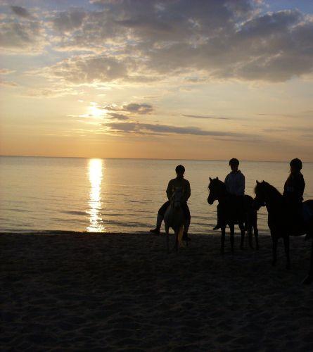 Stransausritt an der schönen Ostsee