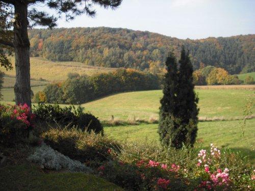 Tal und bewaldete Hügel am Feriendorf