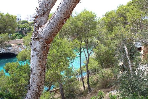 Aussicht von der Terrasse auf die Bucht