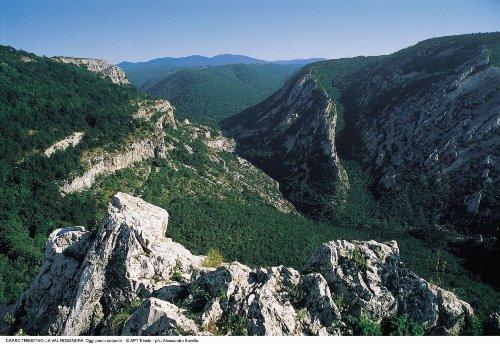 Val Rosandra-Rosandratal