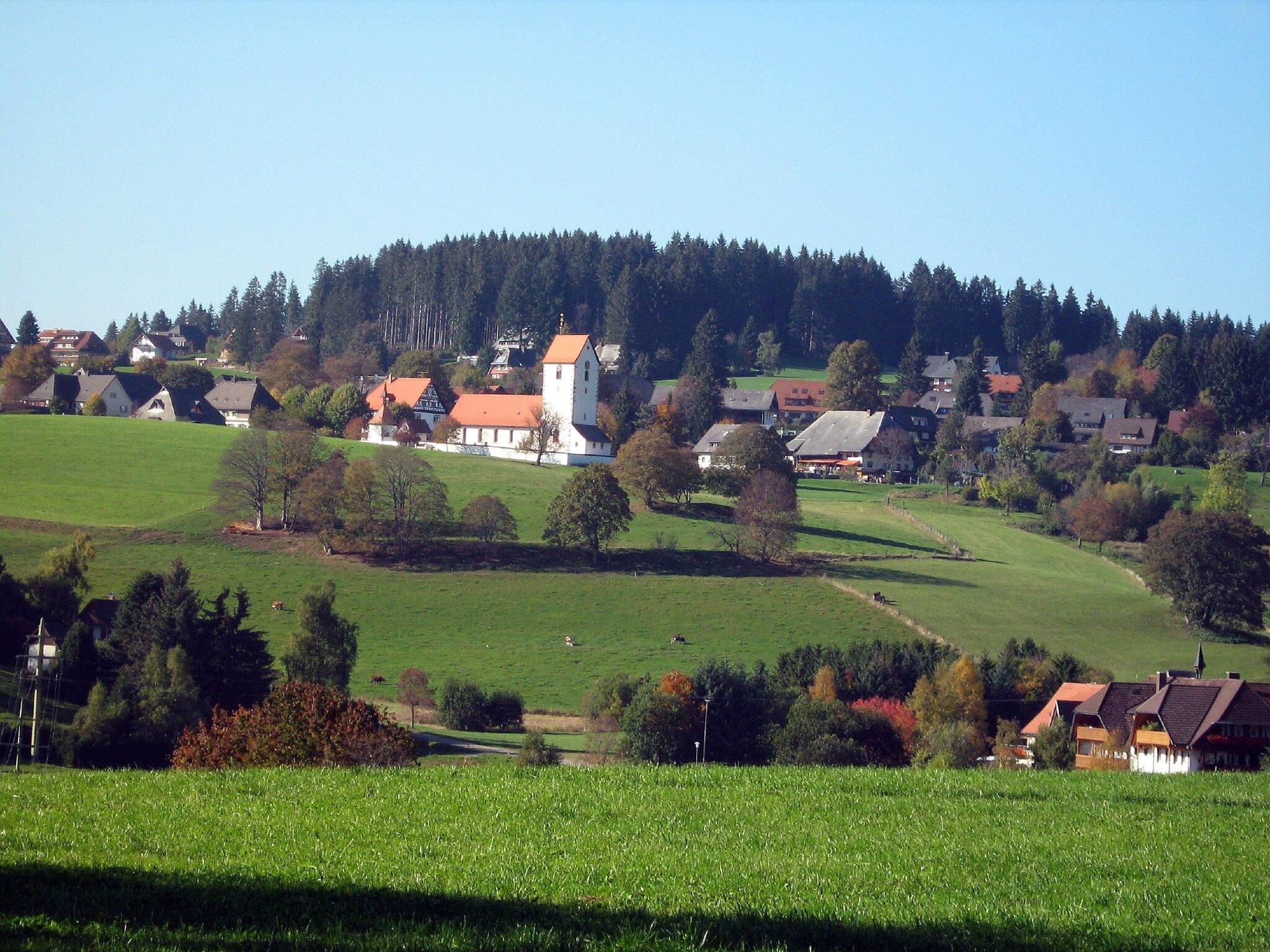Herbstimpressionen im Hochschwazrwald