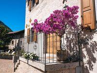 Residence Le Farfalle - Gr�ne Wohnung in Borgo Lares (Zuclo) - kleines Detailbild