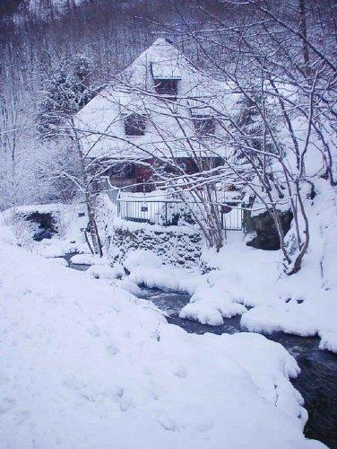 Hinteransicht im Winter